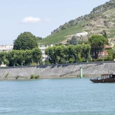 La Sapine passant devant sur le Rhône devant la colline de l'Hermitage