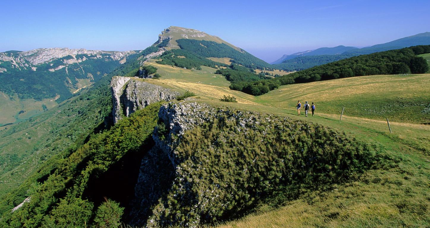 Randonnée sur le plateau d'Ambel dans le Vercors - Top des spots nature de la Drôme