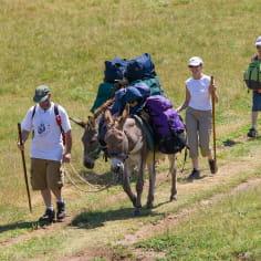 La Drôme, destination rando - avec des ânes