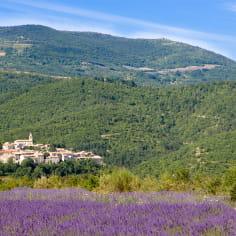 village entre montagne et champ de lavande dans le PNR des Baronnies provençales