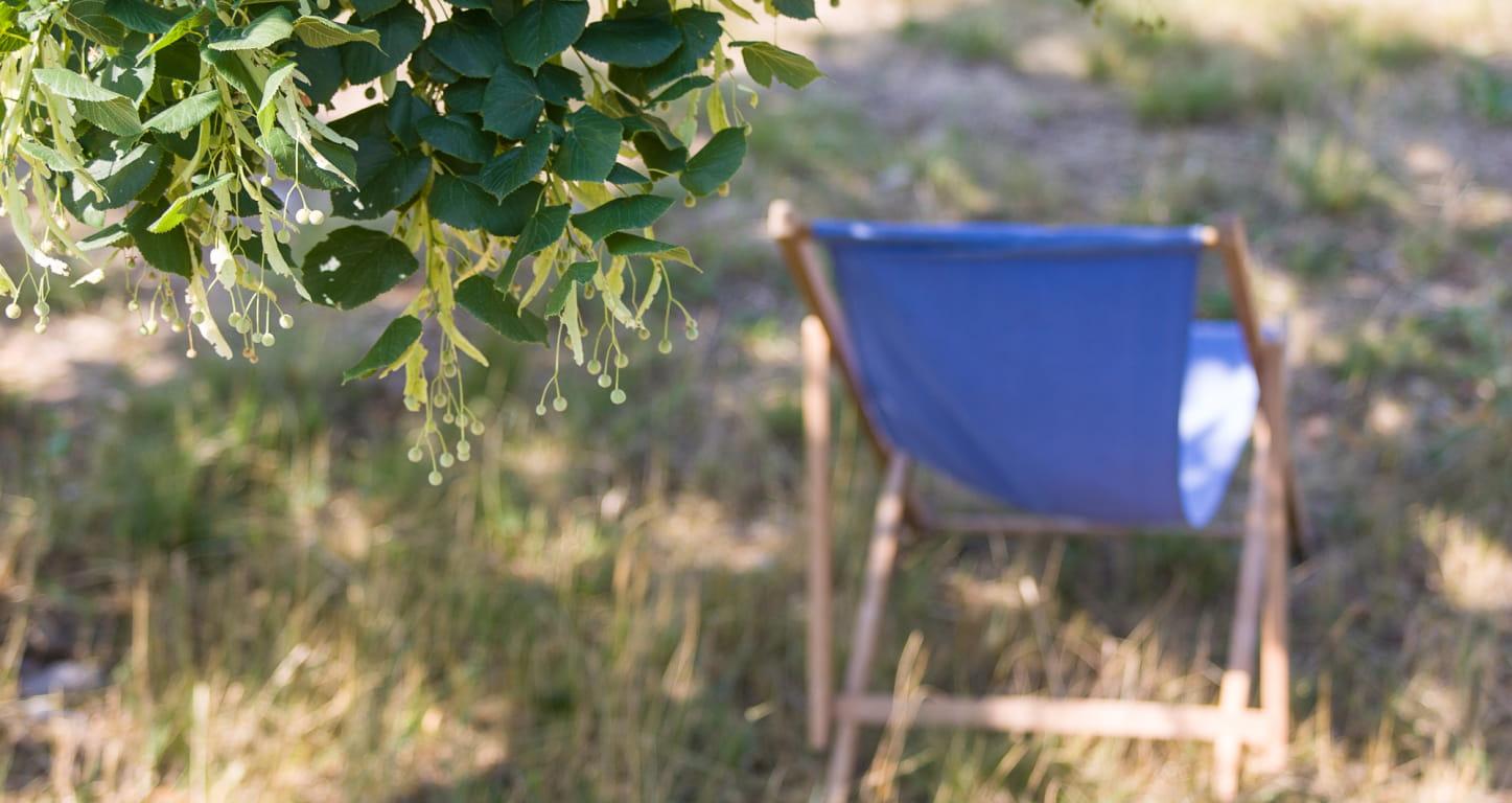 chaise longue bleue sous un tilleul