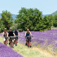 VTT dans la lavande - - La Drôme destination vélo