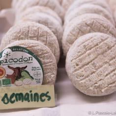 fromage de chèvre tout rond, le picodon