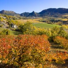 Vallée de l'Ennuyé dans la Drôme à l'automne