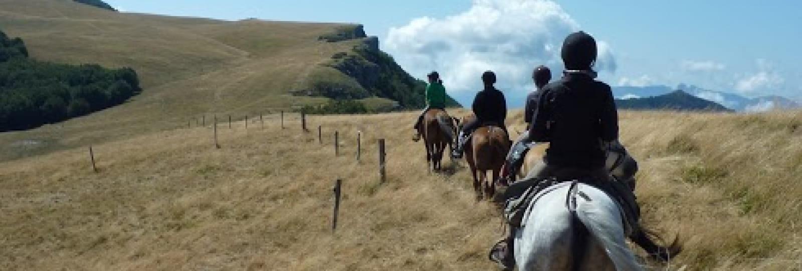 Equitation avec Equisens