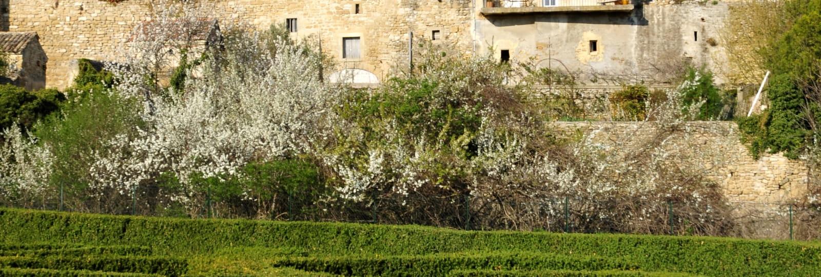 Labyrinthe et château - Grignan, 1000 ans d'histoire