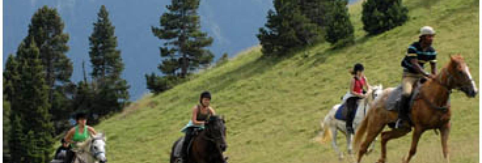 Découverte du Vercors à cheval !