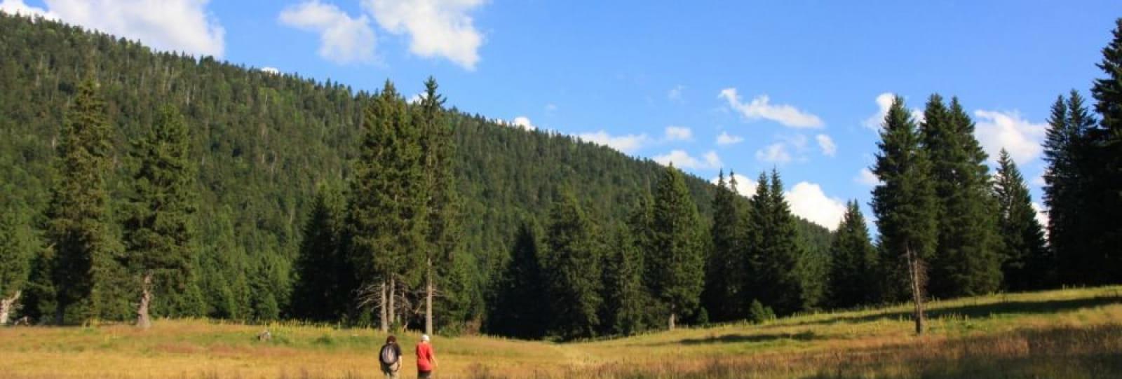 Tour du Vercors en randonnée liberté