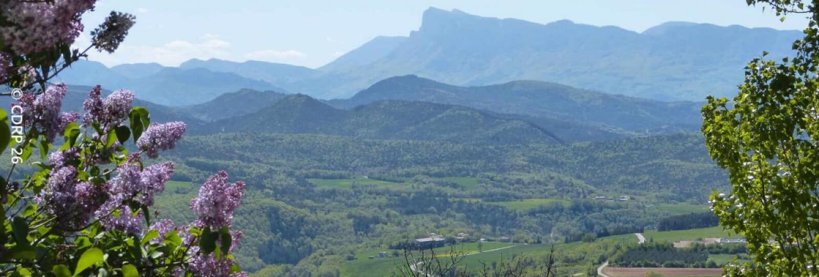 La Montagne de Lozeron