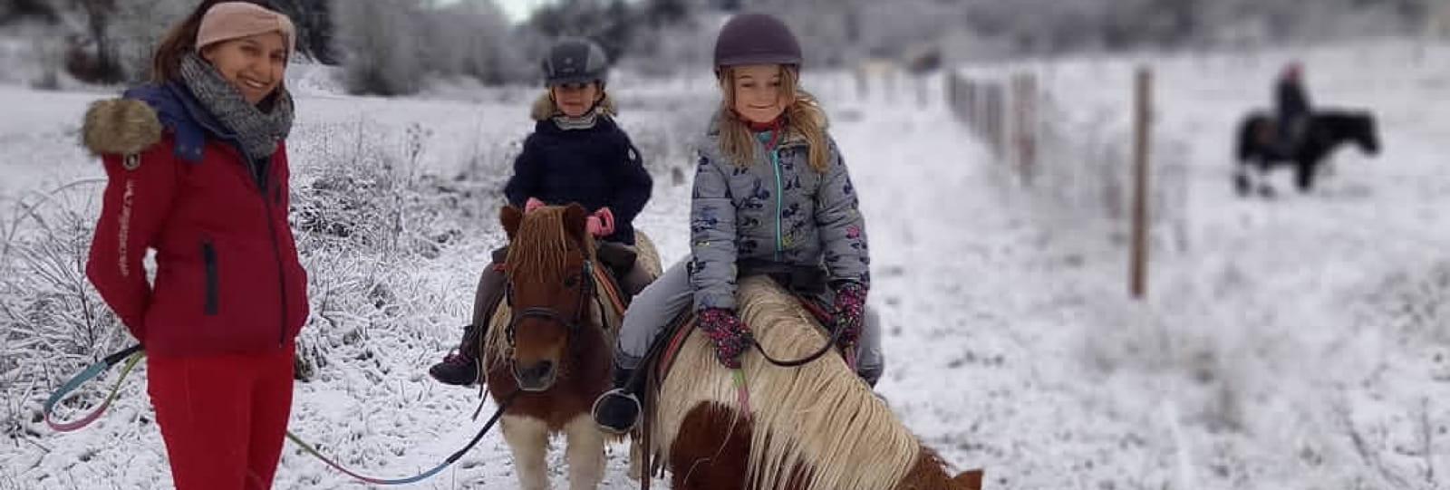 Location de poneys
