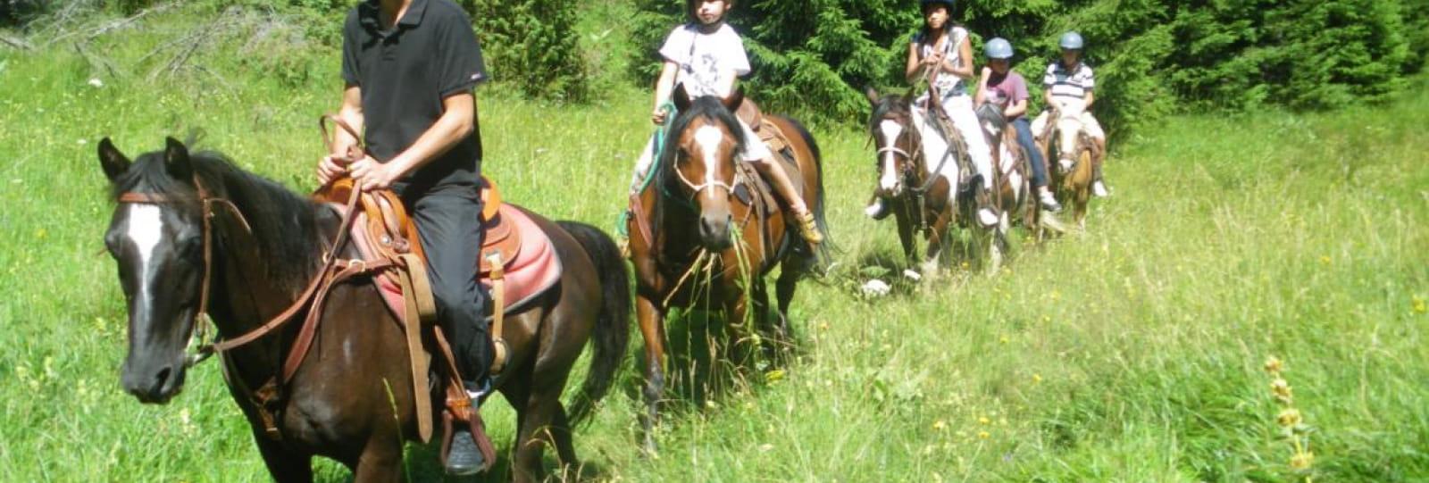 Randonnées équestres avec Le ranch du Vercors