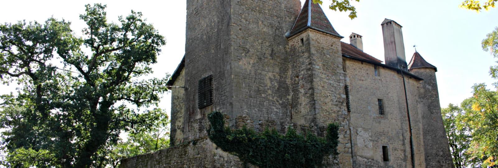 Château de Charmes sur l'Herbasse _