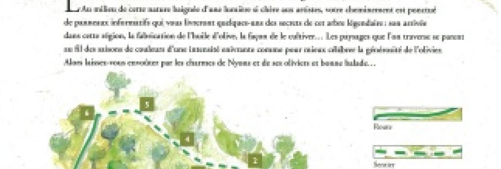 Sentier des oliviers