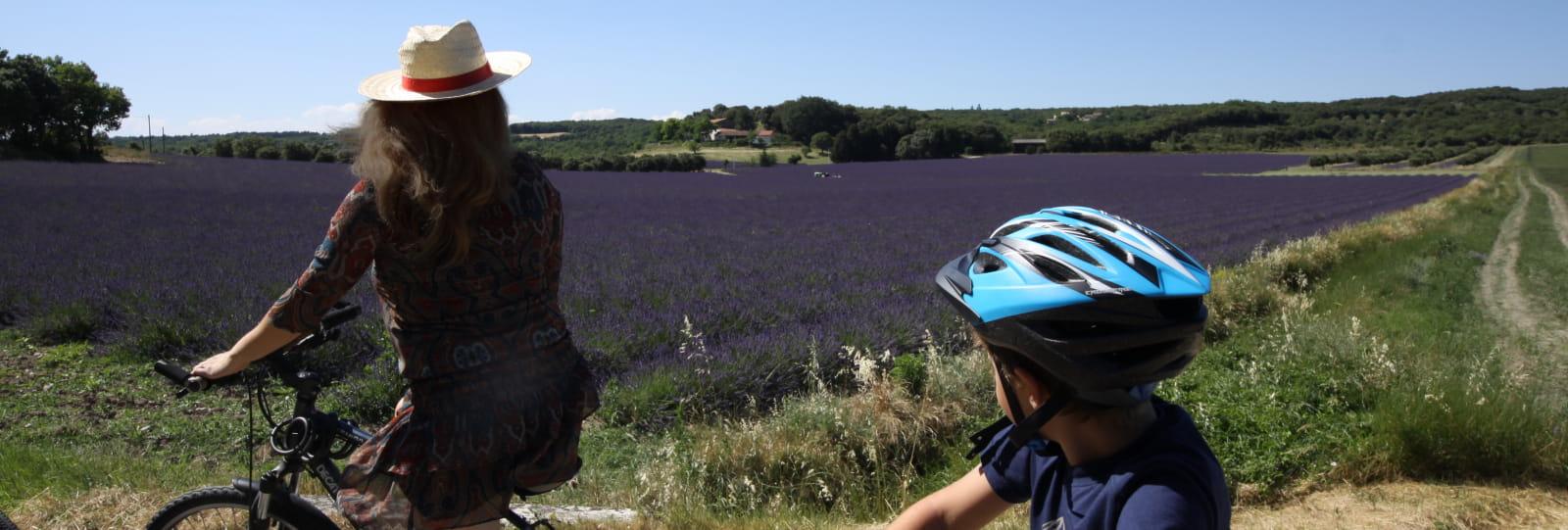 Balade et lavande - Escapade à Vélo autour de la lavande