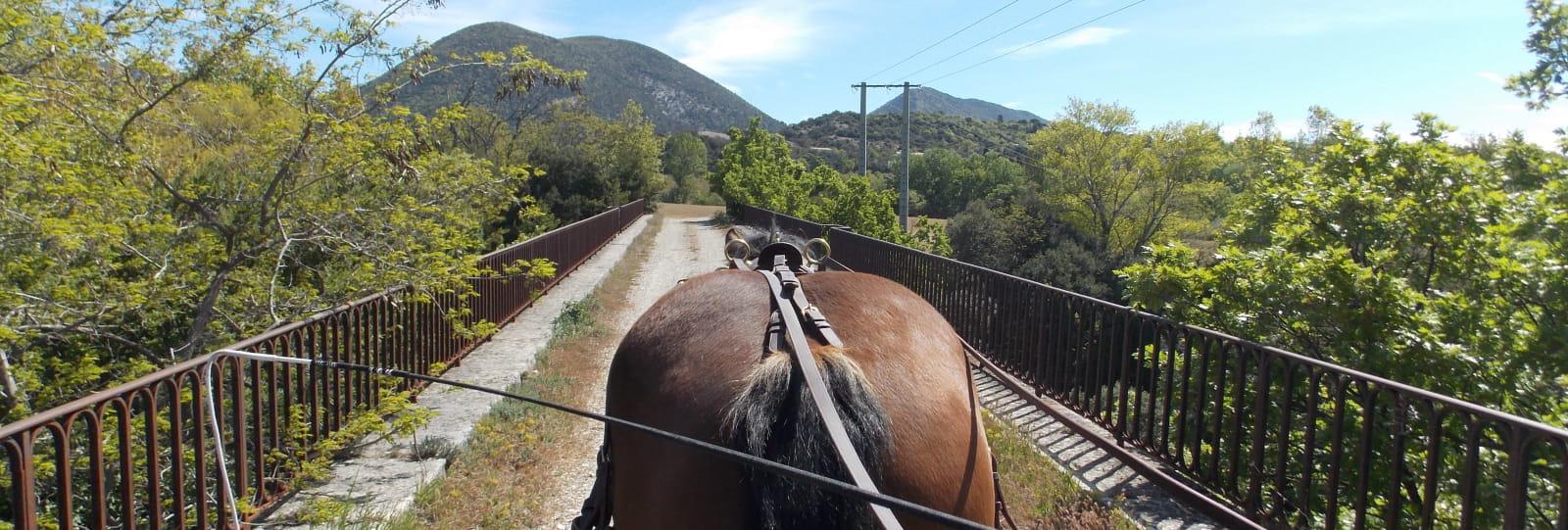 Le cheval vapeur
