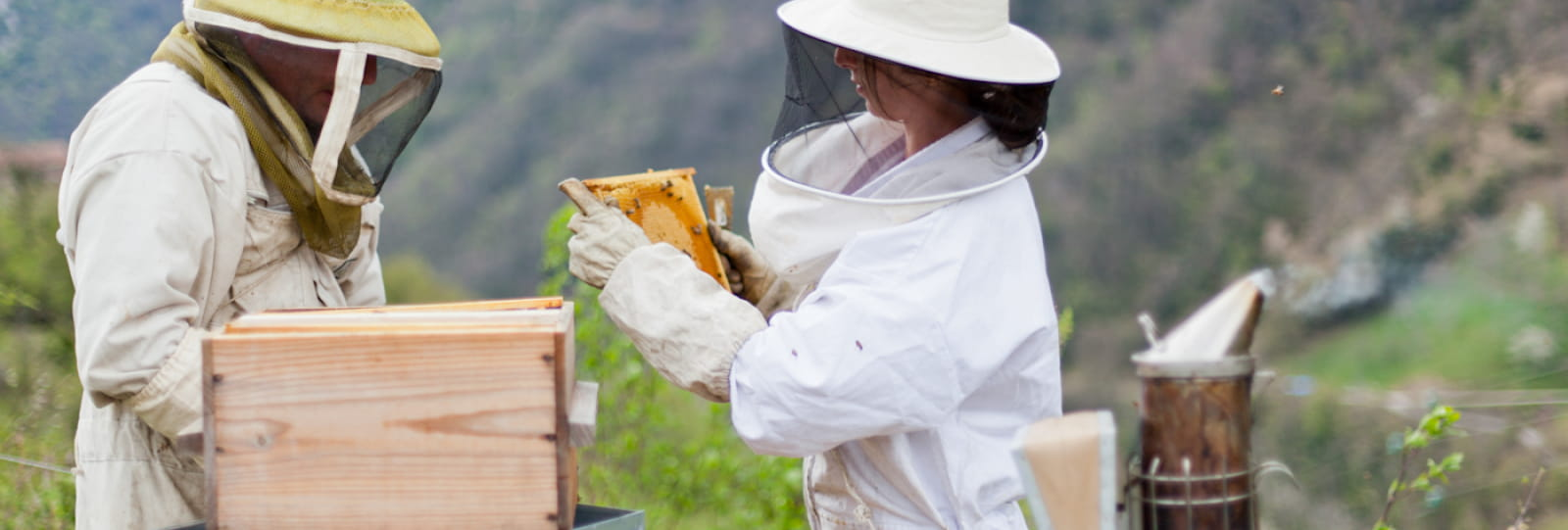 L'Abeille du Vercors Honey Farm
