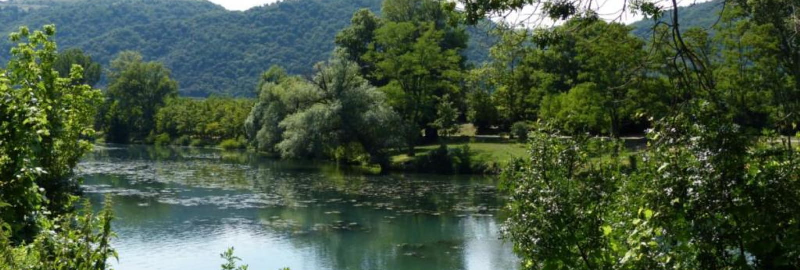 Bassin des Musards