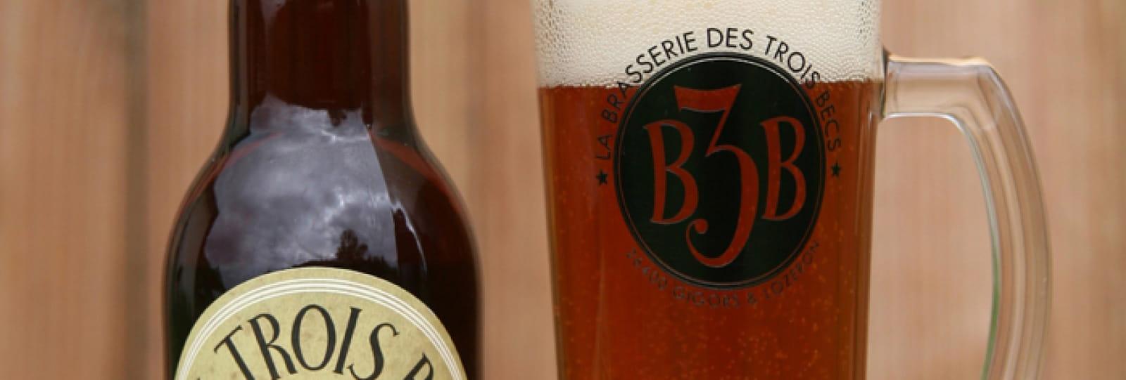Pub de la Brasserie des Trois Becs