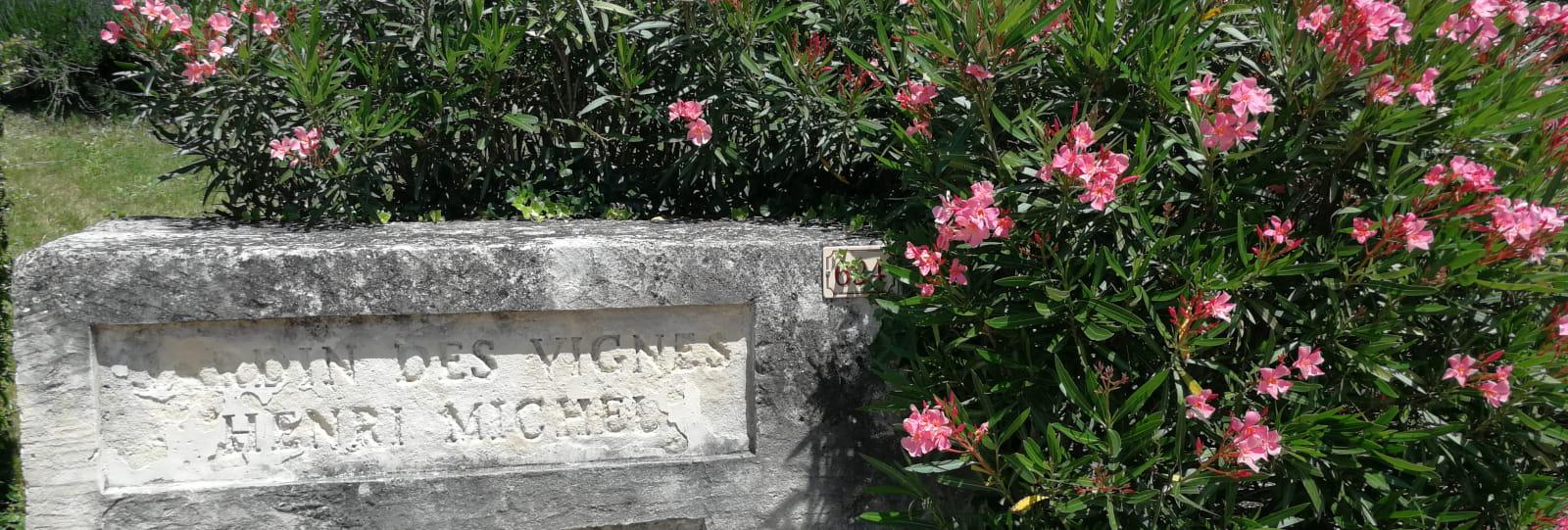 Jardin des Vignes