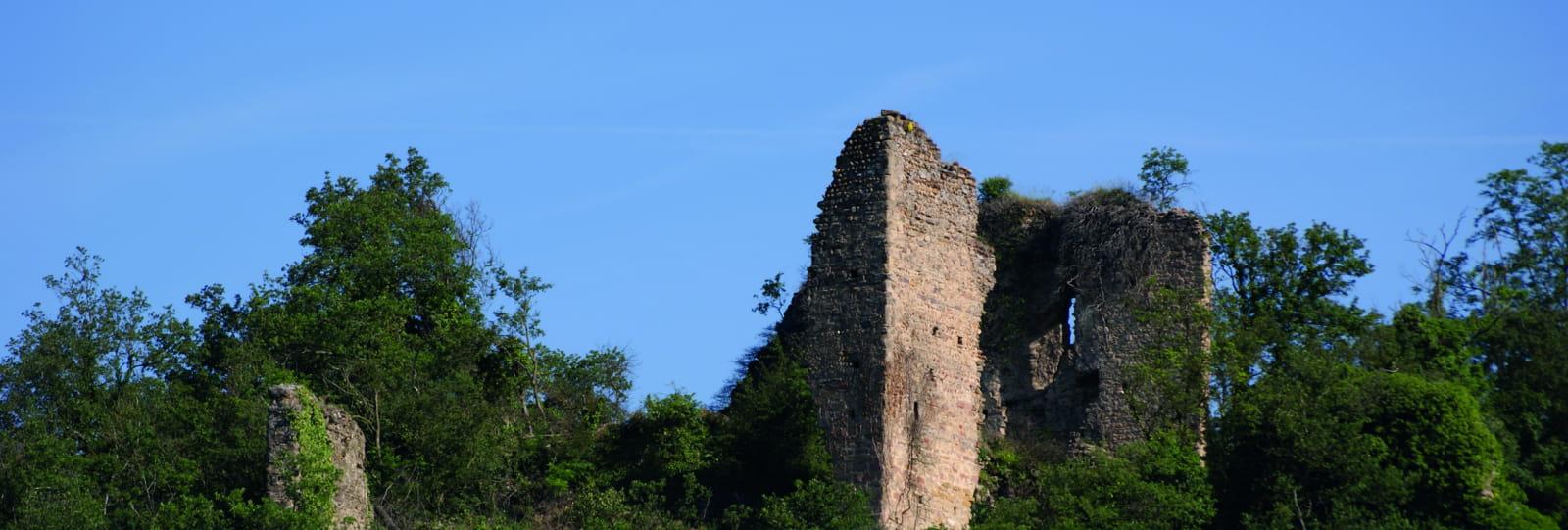 Ruines Château de Mantaille