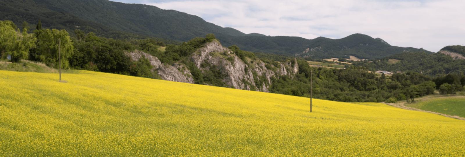 Randonnée La Baume Rocheuse