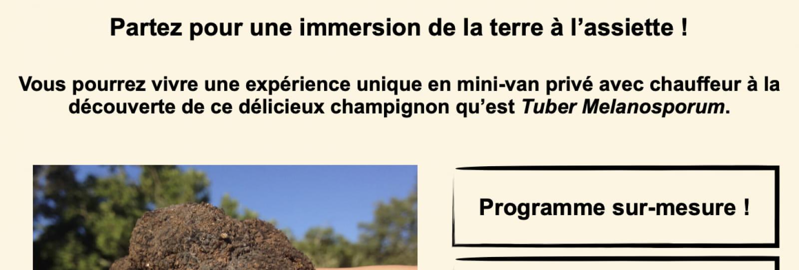 A la découverte du diamant de Provence