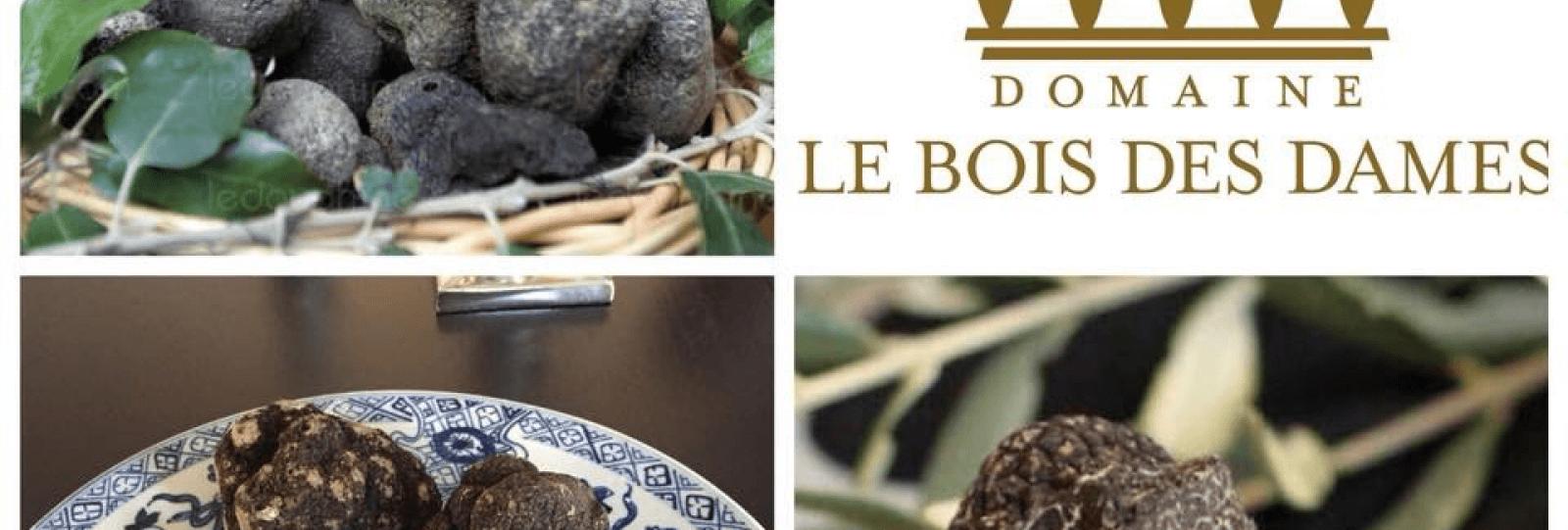 Week-end découverte de la truffe