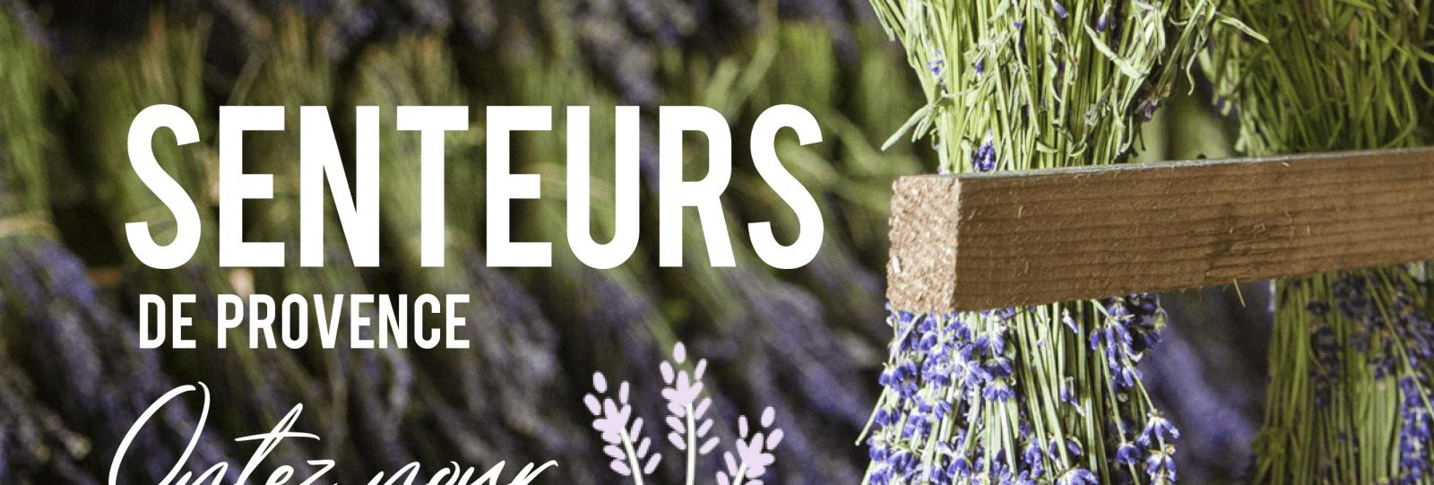 Journée groupes - Senteurs de Provence