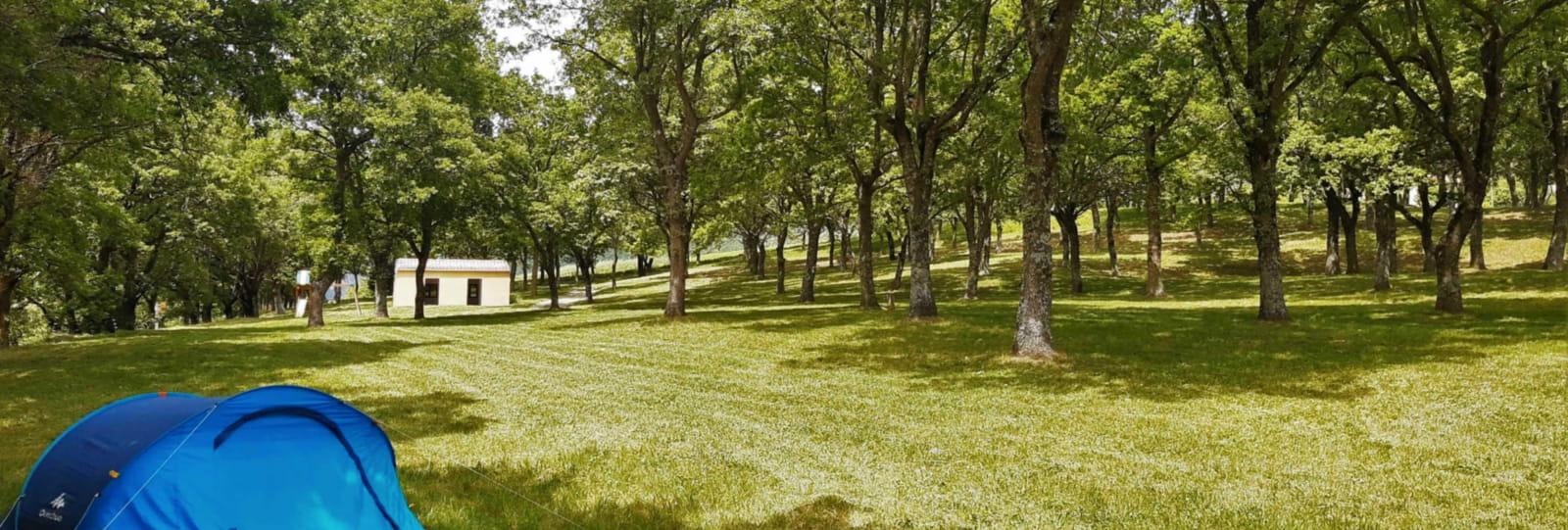 Aire Naturelle de Camping Grange Neuve