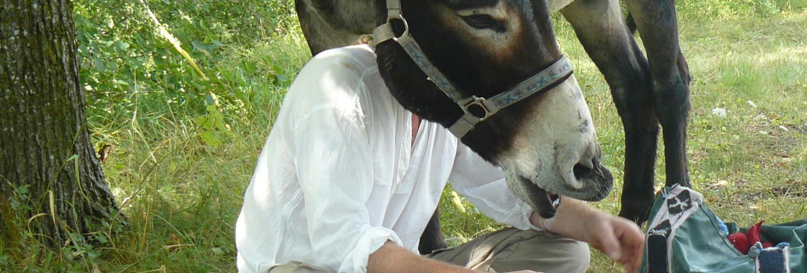 L'homme à la tête d'âne