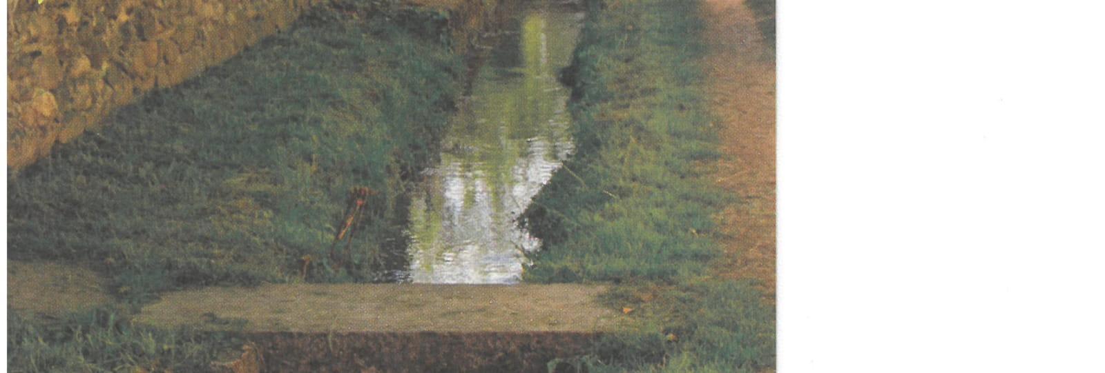 Balade - Le long du Canal de la Martinette