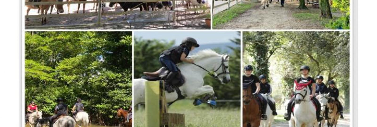 Stages au Centre Equestre