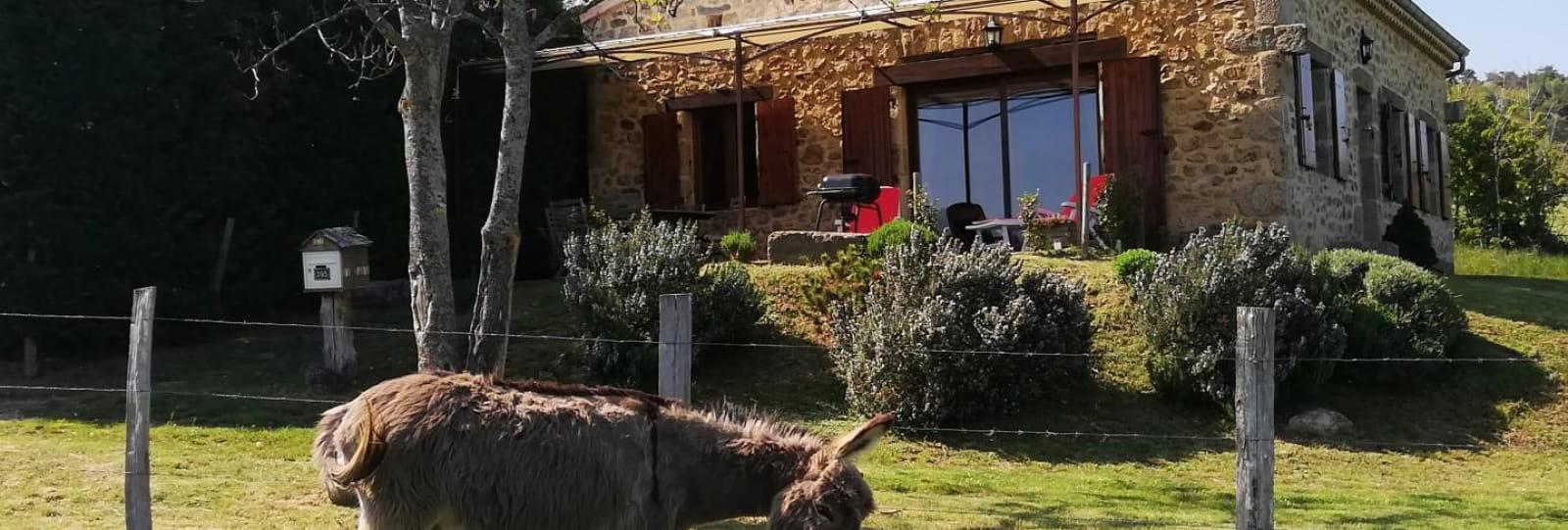 La maison de Firma