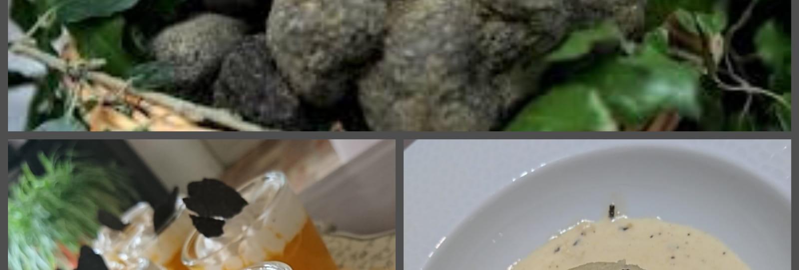 Week-end découverte de la truffe au Mas de la Lance