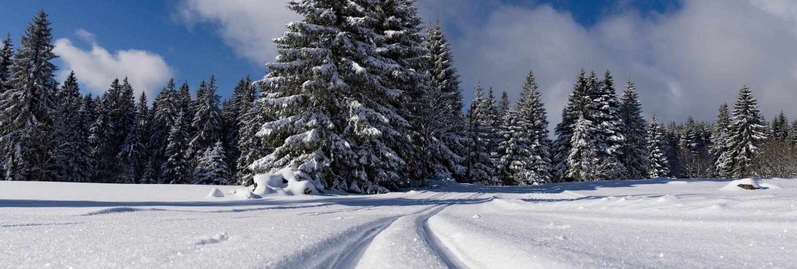 Location de skis - Col de Carri