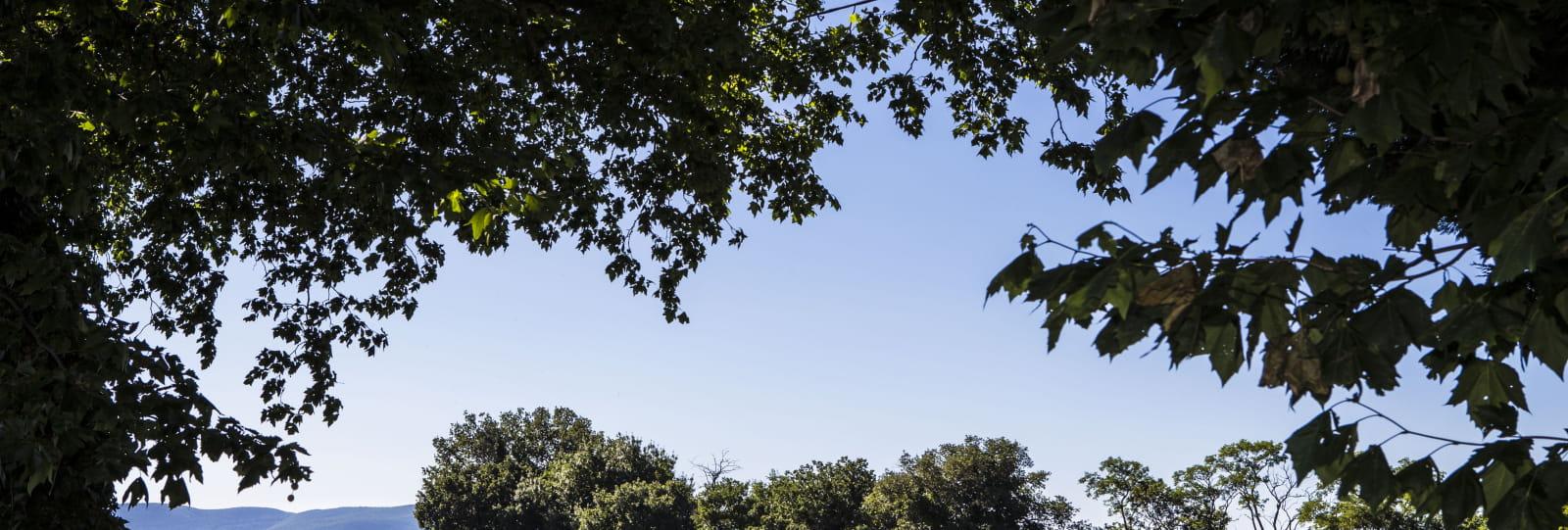 'Journée Émotions' : Découvrez l'essentiel de la Drôme Provençale