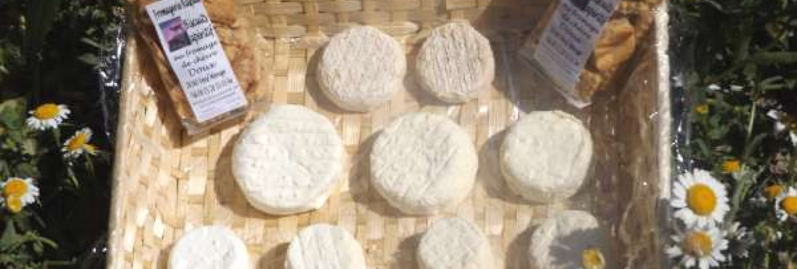 Fromagerie Raspail