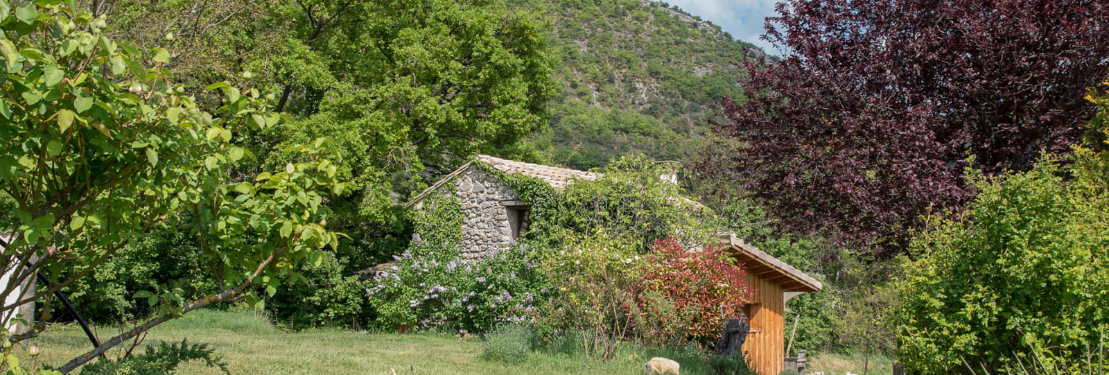 Gehucht van gîtes la Roseraie Drôme