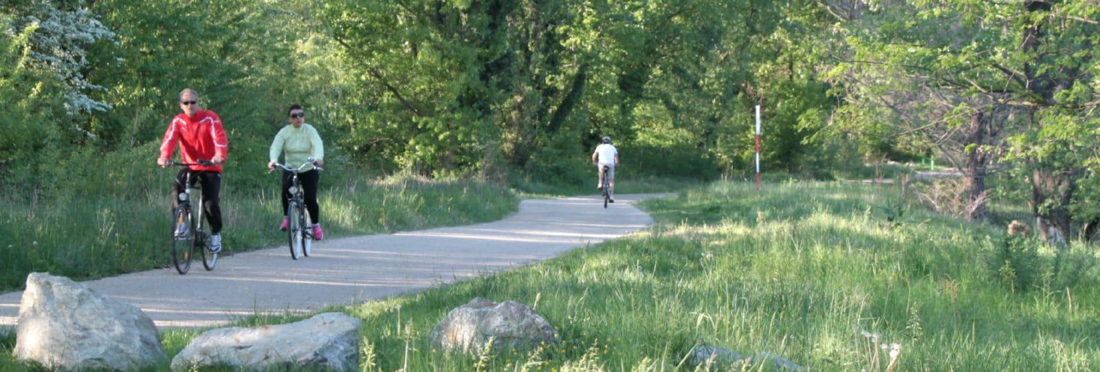 Cyclotouriste sur le voie verte