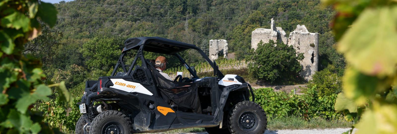 Balade en Buggy dans le vignoble avec 'Terres de Syrah & Easy buggy'