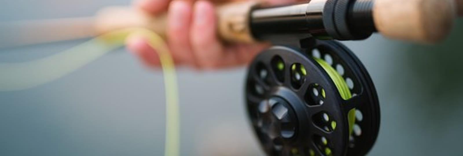 Ateliers de pêche nature 'Bourne Vive'...