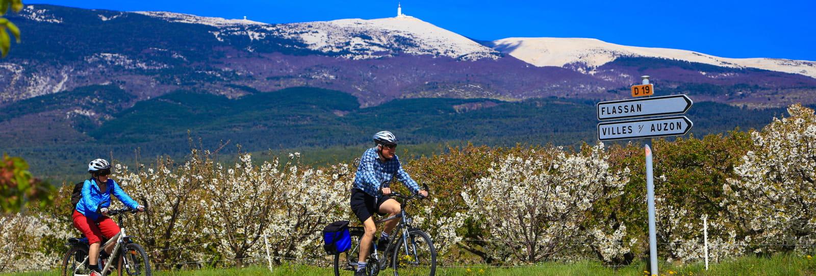 A vélo, en liberté, au pied du Mont Ventoux