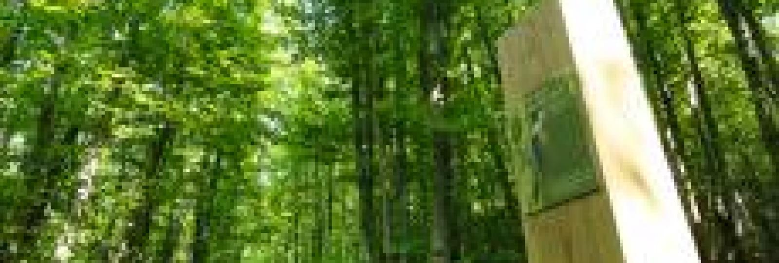 Parcours du Bois des Ussiaux
