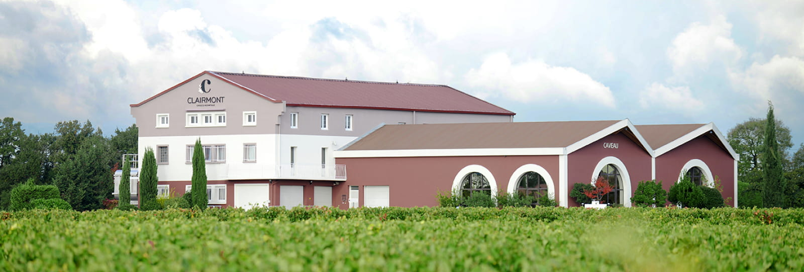 La façade et les vignes
