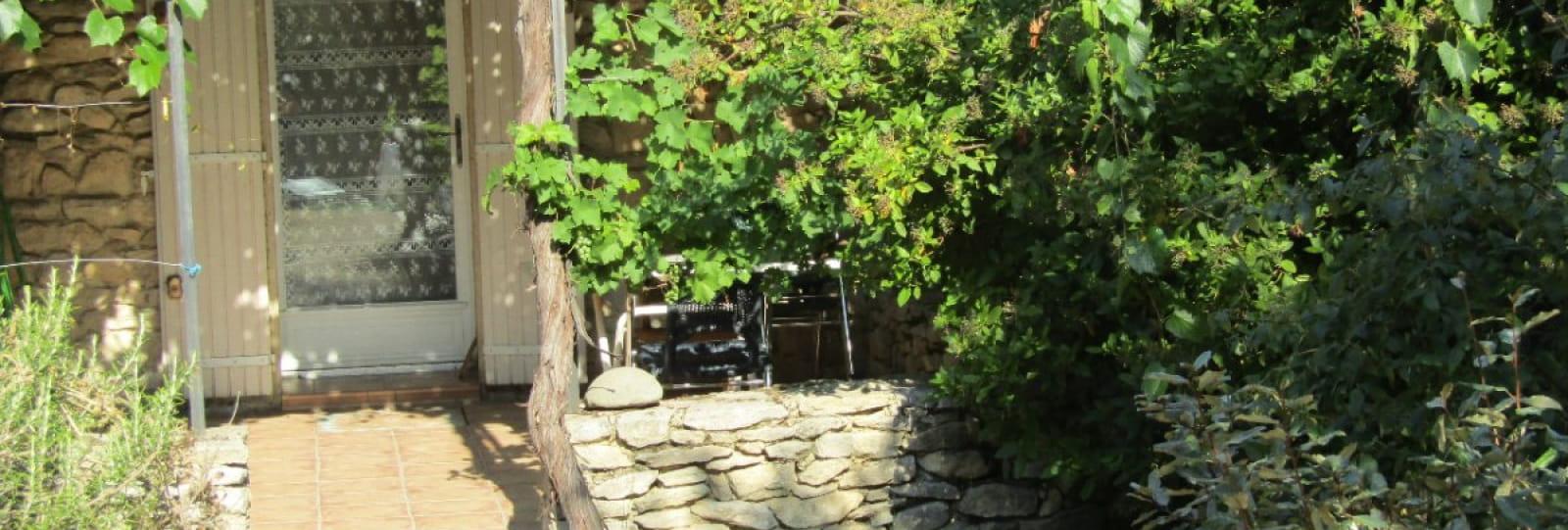 Terrasse ombragée d'une treille de vigne