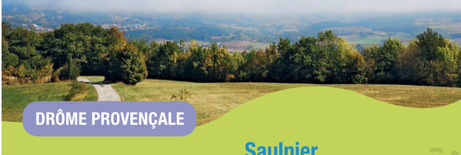 Saulnier
