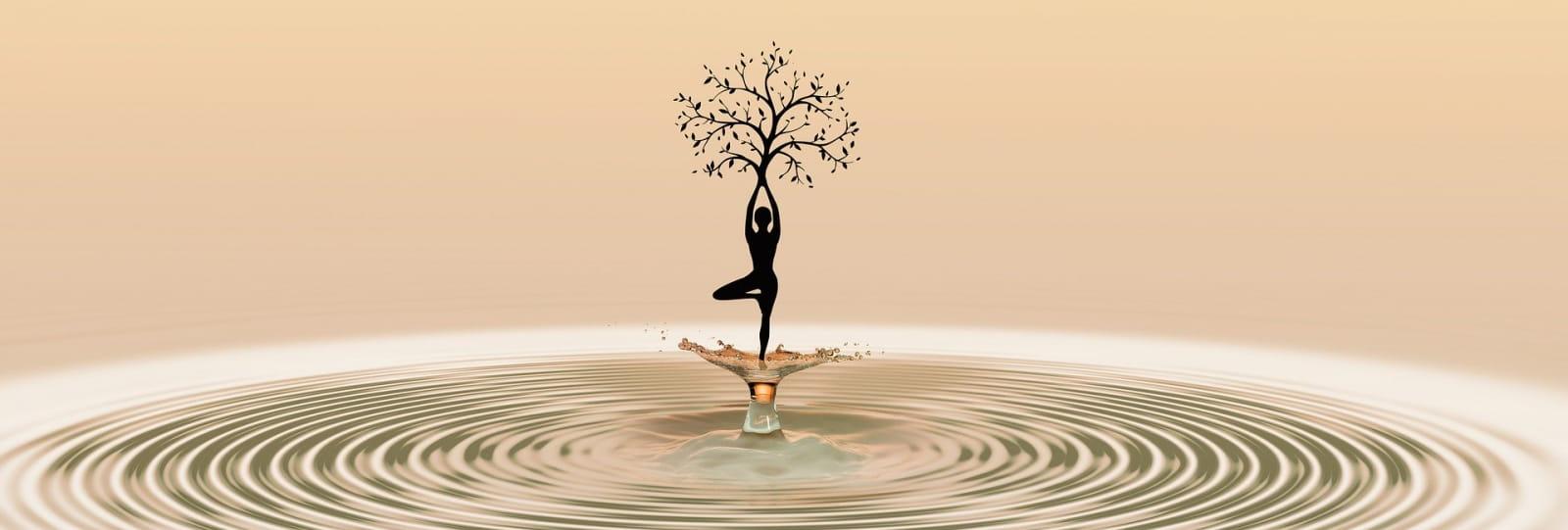 yoga et vin-cave pradelle_chanos curson