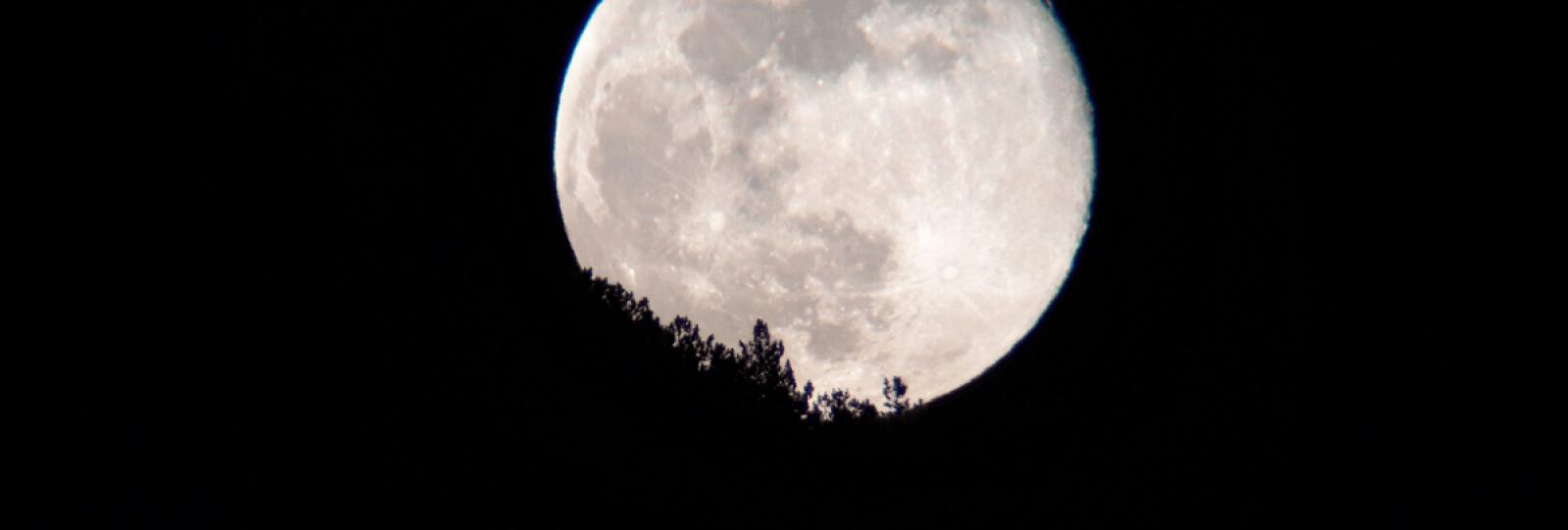 Balade sous la lune avec Christophe Pelet