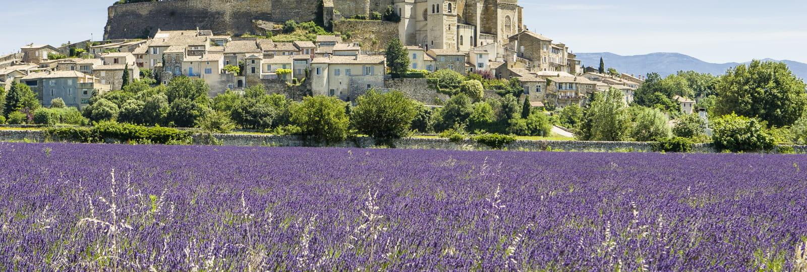 Les châteaux de la Drôme Provençale (n°11)