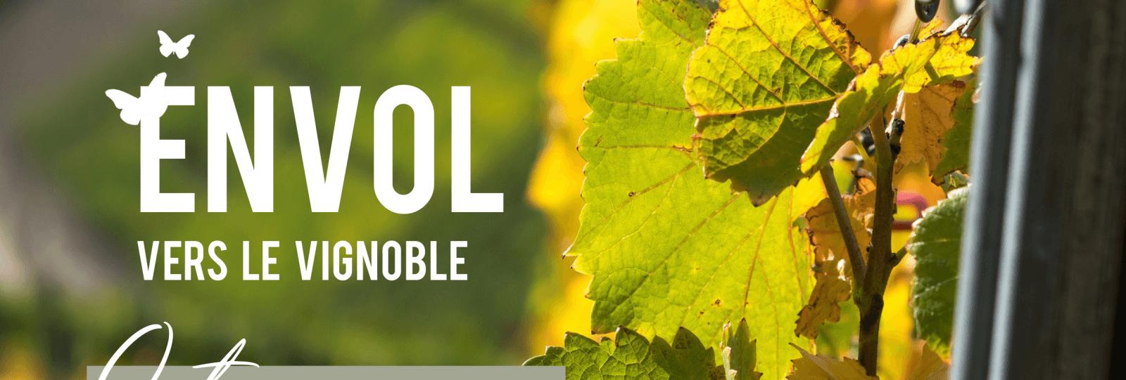Journée groupes - Envol vers le vignoble